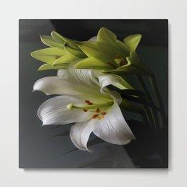 Elegant Water Lily Metal Print
