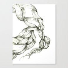 Whimsical Braids Canvas Print