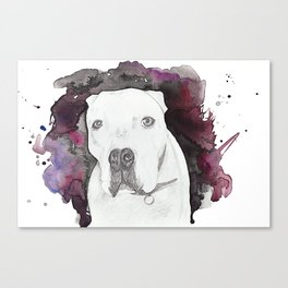 Portland Dog Canvas Print