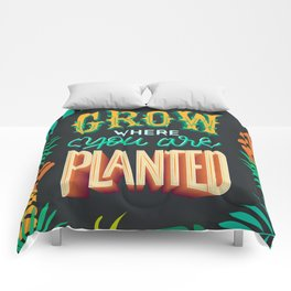 Grow where you are planted Comforters