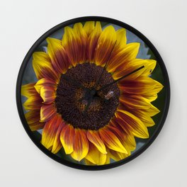 Red Sunflower with Bee Wall Clock