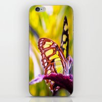 malachite iPhone & iPod Skins featuring Malachite by Cathy Donohoue