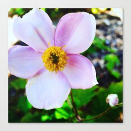Oh, Hi There! Wildflower Canvas Print