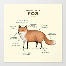 Anatomy of a Fox Canvas Print