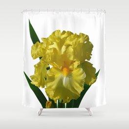Iris 'Power of One' Shower Curtain