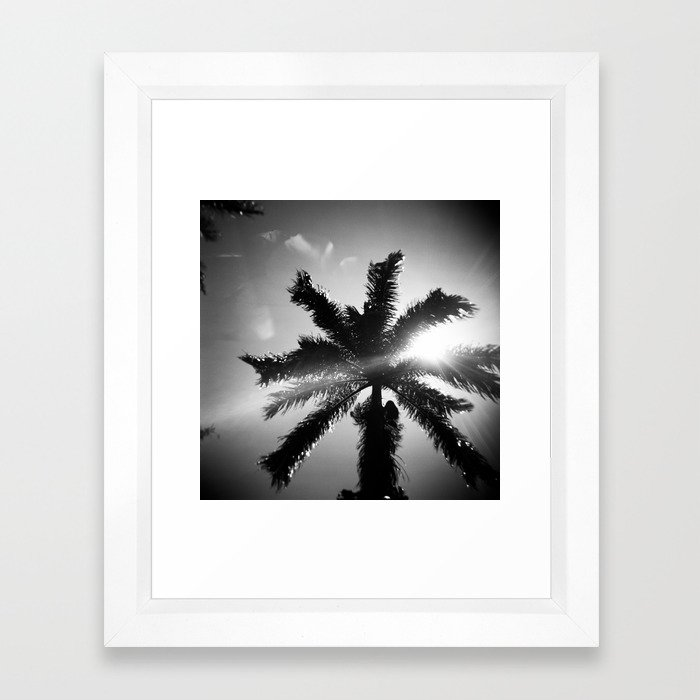 Palm Tree In Maui In Black And White Framed Art Print By