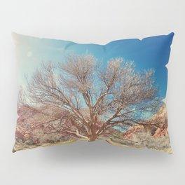 Sun desert tree Pillow Sham