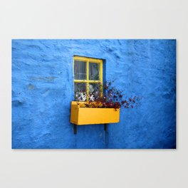 FLOWER - BOX - YELLOW - BLUE - WALL - PHOTOGRAPHY Canvas Print