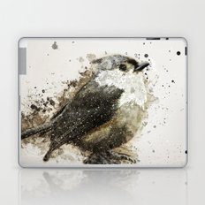 Tufted Titmouse Bird Splatter Laptop & iPad Skin