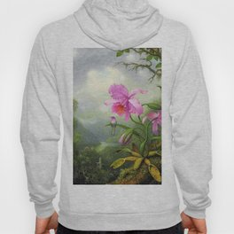 Hummingbird Perched On The Orchid Plant - Martin Johnson Heade Hoody