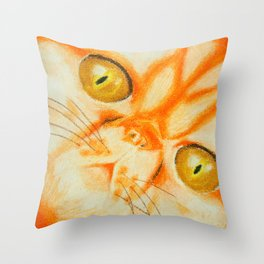 Persian Kitty Throw Pillow