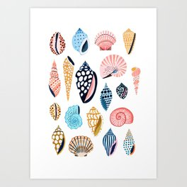 Under the Sea Shells Art Print