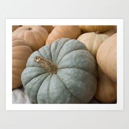 Blue Pumpkin and Squash Close up Art Print