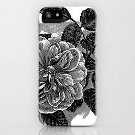 Roses 1894 iPhone Case