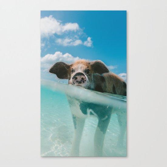 That piggy life Canvas Print
