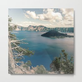 Oregon Dreams Metal Print