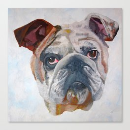 American Bulldog Portrait: Yale Mascot Canvas Print