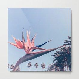 Birds of Paradise Print {3 of 3} | Palm Trees Ocean Summer Beach Cool Blue Photography Art Metal Print