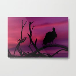 Vulture at Top of Tree Dark Scene Metal Print