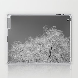 Spring Breeze, Port Hope, Ontario Laptop & iPad Skin