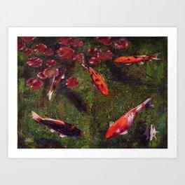 Koi Fish Swimming at Volunteer Park Art Print