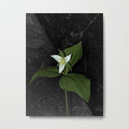 Forest Flower Metal Print