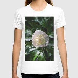 Flower Photography by Valerie Blanchett T-shirt