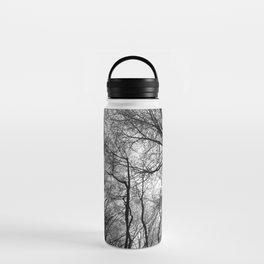 Winter Trees Water Bottle