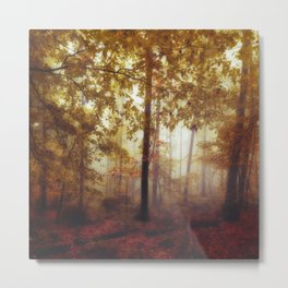 Rain Whispers - Fall Forest in Mist Metal Print