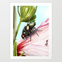 Fly on a flower 15 Art Print