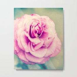 Magenta Rose Fine Art Photography Metal Print