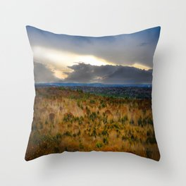Overlook From Bradbury Mountain Throw Pillow