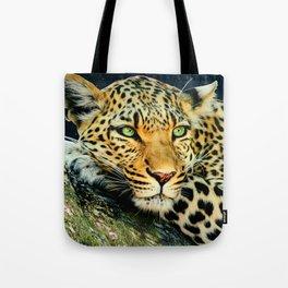 Leopards Gaze 3 Tote Bag