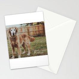 Moose Stationery Cards