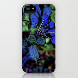Exotic fruit and rich. iPhone Case