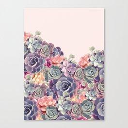 Succulent plants Canvas Print