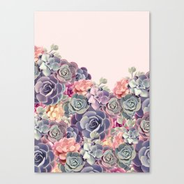 Succulent plants Canvas Print