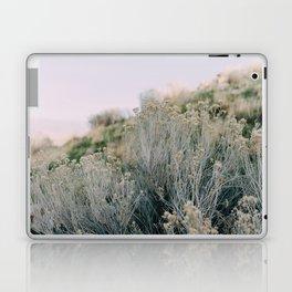 Desert Blush Laptop & iPad Skin