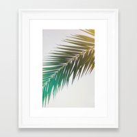 palm tree Framed Art Prints featuring palm tree by iulia pironea