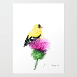 Little Goldfinch by Teresa Thompson Art Print