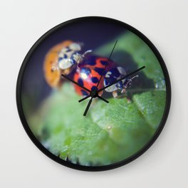 Lady Bug Love Wall Clock