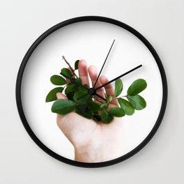 INDOOR GARDEN N3 Wall Clock