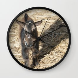 Small Nubian Goat and shadow Wall Clock