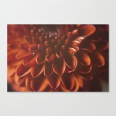 Red Burst Canvas Print