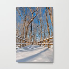 Susquehanna Winter Forest Bridge Metal Print