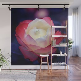 bed of roses: night shades Wall Mural
