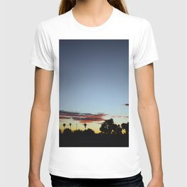 Sunset In The Park T-shirt
