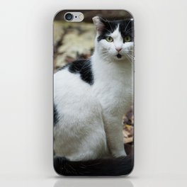 Tuxedo and a Goutee iPhone Skin