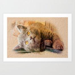 KITTEN RELAX Art Print