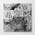 The Roses (Black and White) by nocolordesigns